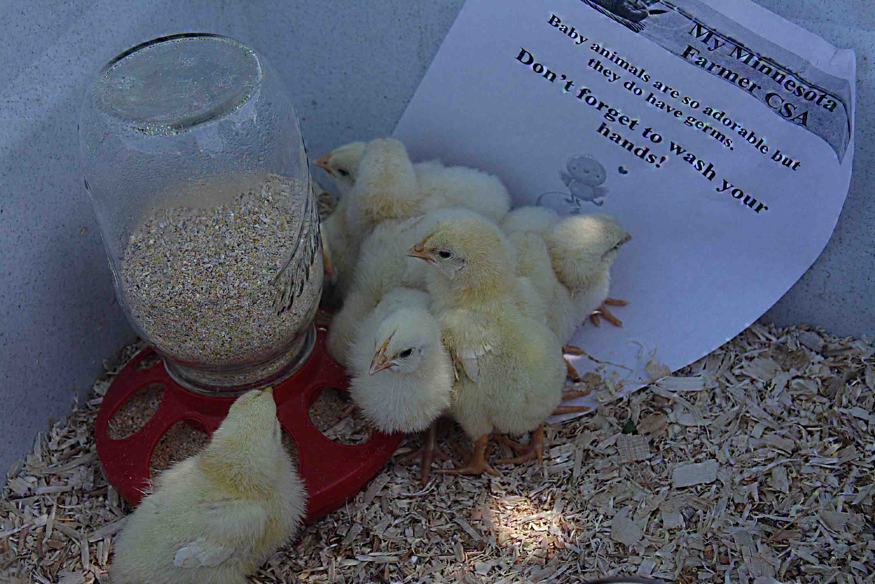 Save the Date! Come visit the farm and hold the animals Sunday May 20th.